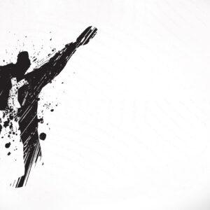 تحقیق روشهای آماده سازی ورزشکاران جهت حضور بهتر در مسابقات تکواندو کشوری