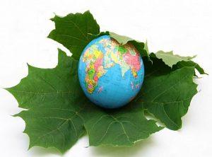 خرید و دانلود مقاله جایگاه برنامه ریزی منطقه ای در توسعه پایدار