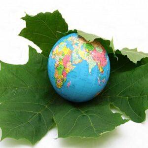 دانلود مقاله جایگاه برنامه ریزی منطقه ای در توسعه پایدار