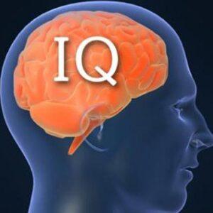 مبانی نظری و پیشینه تحقیق هوش و هوش چندگانه گاردنر