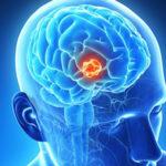 مبانی نظری و پیشینه پژوهش در مورد حافظه