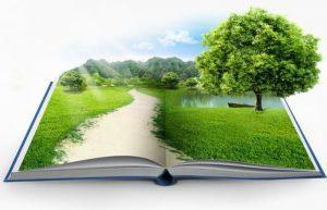 خرید و دانلود طرح درس سالانه انسان و محیط زیست (کلیه رشته ها)
