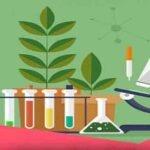 گزارش تخصصی چگونگی بهبود وضعیت درسی دانش آموزان در درس علوم تجربی چهارم ابتدایی
