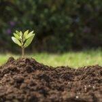 پاور پوینت خاک