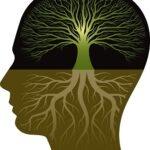 مبانی نظری و پیشینه تحقیق باورهای معرفت شناختی