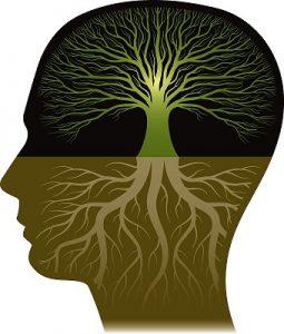 مبانی نظری باورهای معرفت شناختی
